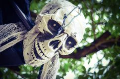 Ένωση σκελετών αποκριών από ένα δέντρο Στοκ φωτογραφίες με δικαίωμα ελεύθερης χρήσης