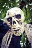 Ένωση σκελετών αποκριών από ένα δέντρο Στοκ φωτογραφία με δικαίωμα ελεύθερης χρήσης