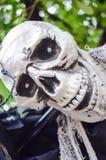 Ένωση σκελετών αποκριών από ένα δέντρο Στοκ Εικόνα