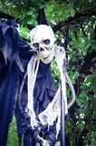 Ένωση σκελετών αποκριών από ένα δέντρο Στοκ Φωτογραφία