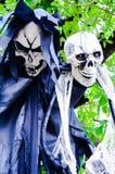 Ένωση σκελετών αποκριών από ένα δέντρο Στοκ Εικόνες