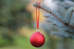 Ένωση σφαιρών Χριστουγέννων στις μπλε ερυθρελάτες Στοκ Φωτογραφία
