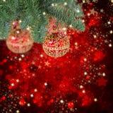 Ένωση σφαιρών Χριστουγέννων στο αειθαλές δέντρο Στοκ Φωτογραφίες