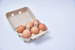 Έξι αυγά στο κιβώτιο εγγράφου Στοκ φωτογραφίες με δικαίωμα ελεύθερης χρήσης