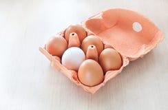 Έξι αυγά Στοκ Εικόνες