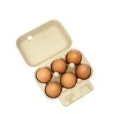 Έξι καφετιά αυγά σε μια συσκευασία χαρτοκιβωτίων Στοκ φωτογραφία με δικαίωμα ελεύθερης χρήσης