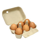 Έξι καφετιά αυγά σε μια συσκευασία χαρτοκιβωτίων Στοκ Εικόνες