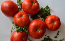 έξι ντομάτες Στοκ Εικόνα