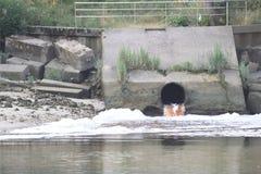 Έξοδος νερού αποβλήτων στον ποταμό με τον αφρό και τη ρύπανση στοκ φωτογραφία με δικαίωμα ελεύθερης χρήσης
