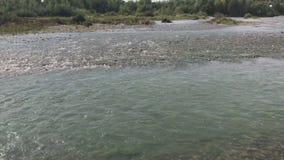 Έξοδος στη δύσκολη ακτή ενός ποταμού βουνών Μια γρήγορη ροή του νερού είναι ορατή, στον ορίζοντα υπάρχει μια αλυσίδα βουνών απόθεμα βίντεο