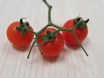 Έξοχες νόστιμες ντομάτες Στοκ φωτογραφία με δικαίωμα ελεύθερης χρήσης