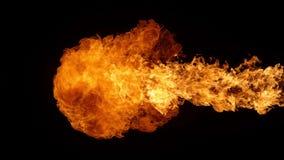 Έξοχος σε αργή κίνηση του φυσήματος πυρκαγιάς που απομονώνεται στο μαύρο υπόβαθρο απόθεμα βίντεο