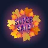 Έξοχο έμβλημα πώλησης Φθινόπωρο Σχέδιο εγγράφου 9 autumn colors Στοκ Φωτογραφίες