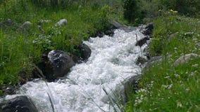 Έξοχο σε αργή κίνηση βίντεο ορμητικά σημείων ποταμού ποταμών Mounain απόθεμα βίντεο