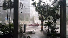 Έξοχο σε αργή κίνηση βίντεο στη δυνατή βροχή απόθεμα βίντεο