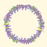 Έξοχο στεφάνι με τα λεπτομερή λουλούδια, πουλιά, φύλλα, πέταλα VE Στοκ Εικόνες