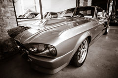 Έξοχο φίδι της Shelby GT 500E Στοκ φωτογραφίες με δικαίωμα ελεύθερης χρήσης