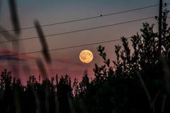 Έξοχο φεγγάρι στον κόκκινο ουρανό ηλιοβασιλέματος Στοκ Εικόνες