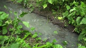Έξοδος σωλήνων αγωγών απόβλητου ύδατος, που ρέει στο δάσος κοιτών πλημμυρών φιλμ μικρού μήκους