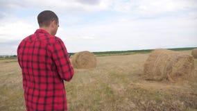 Έξυπνη έννοια γεωργίας καλλιέργειας Αγρότης ατόμων που μελετά μια θυμωνιά χόρτου σε έναν τρόπο ζωής τομέων σε μια ψηφιακή ταμπλέτ απόθεμα βίντεο