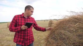 Έξυπνη έννοια γεωργίας καλλιέργειας Αγρότης ατόμων που μελετά μια θυμωνιά χόρτου σε έναν τομέα στον ψηφιακό τρόπο ζωής ταμπλετών  απόθεμα βίντεο