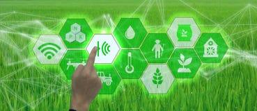 Έξυπνη καλλιέργεια, βιομηχανική έννοια γεωργίας με το τεχνητό intelligenceai Έξυπνο ρομπότ χρήσης της Farmer και αυξημένη πραγματ ελεύθερη απεικόνιση δικαιώματος