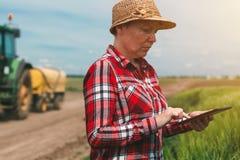 Έξυπνη καλλιέργεια, χρησιμοποιώντας τη σύγχρονη τεχνολογία στη γεωργική δραστηριότητα Στοκ Εικόνες