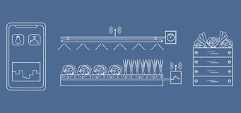 Έξυπνο αγρόκτημα και γεωργία Παρακολούθηση και έλεγχος της θερμοκρασίας, υγρασία, ελαφρύ επίπεδο Καλλιέργεια των φυτών νέες τεχνο ελεύθερη απεικόνιση δικαιώματος