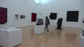 Έργο τέχνης, έργα ζωγραφικής, εκθέματα μουσείων απόθεμα βίντεο