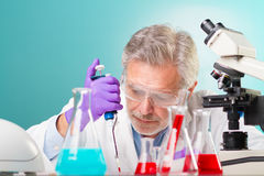 Έρευνα βιολογικής επιστήμης. Στοκ Φωτογραφίες