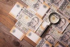 Έρευνα για την έννοια χρημάτων Στοκ φωτογραφία με δικαίωμα ελεύθερης χρήσης