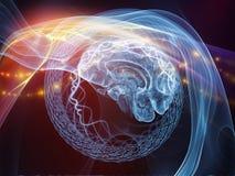 Έρευνα στο μυαλό Στοκ εικόνες με δικαίωμα ελεύθερης χρήσης