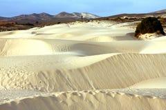 Έρημος άμμου Στοκ φωτογραφία με δικαίωμα ελεύθερης χρήσης