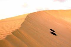 Έρημος άμμου Στοκ Εικόνα