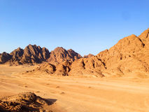 έρημος Αιγύπτιος Στοκ Εικόνα