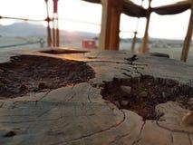 Έρημος από τον κορμό στοκ φωτογραφία με δικαίωμα ελεύθερης χρήσης