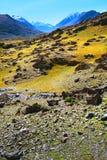 Έρημος βουνών πετρών τοπίων με τους βράχους και τη μικρή βλάστηση Στοκ Εικόνες
