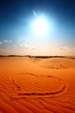 έρημος ι αγάπη Στοκ Φωτογραφία