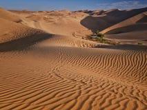 Έρημος και όαση Στοκ φωτογραφία με δικαίωμα ελεύθερης χρήσης