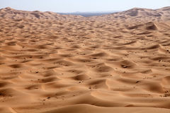 έρημος Μαρόκο Στοκ Φωτογραφία