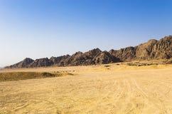 Έρημος μπροστά από τα βουνά thei Στοκ Εικόνα