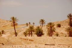 Έρημος Σαχάρας καλοκαιριού στην Τυνησία Στοκ Φωτογραφία