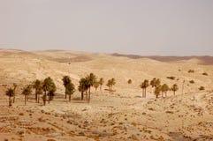 Έρημος Σαχάρας καλοκαιριού στην Τυνησία Στοκ εικόνα με δικαίωμα ελεύθερης χρήσης