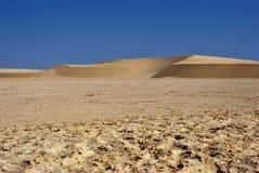 Έρημος Σαχάρας Στοκ Φωτογραφίες