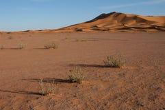 έρημος Σαχάρα Στοκ φωτογραφίες με δικαίωμα ελεύθερης χρήσης