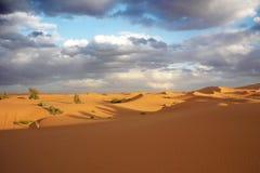Έρημος σε Merzouga στοκ φωτογραφίες