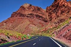 Έρημος της Αριζόνα και τα roas στοκ εικόνα