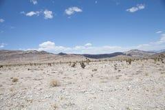 Έρημος της Νεβάδας με τα βουνά στοκ εικόνες