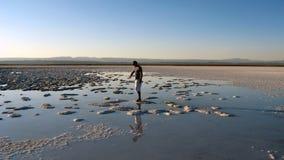 έρημος της Χιλής atacama Στοκ Φωτογραφία