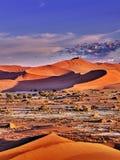 Έρημος του namib με τους πορτοκαλιούς αμμόλοφους στοκ εικόνες με δικαίωμα ελεύθερης χρήσης